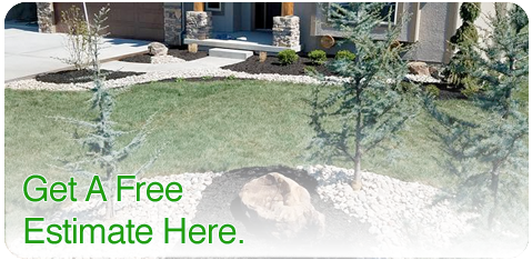 free-lawn-care-estimate